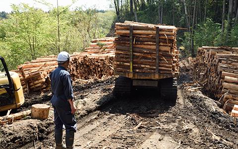 林地残材供給事業